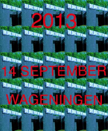 Dag van de Hoed 2013